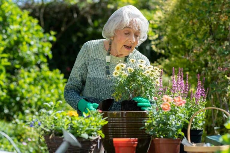 Best gardening tools and aids for seniors