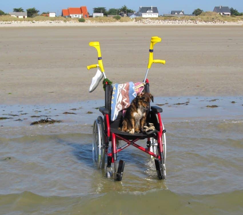 Wheelchair Walking Stick Holder