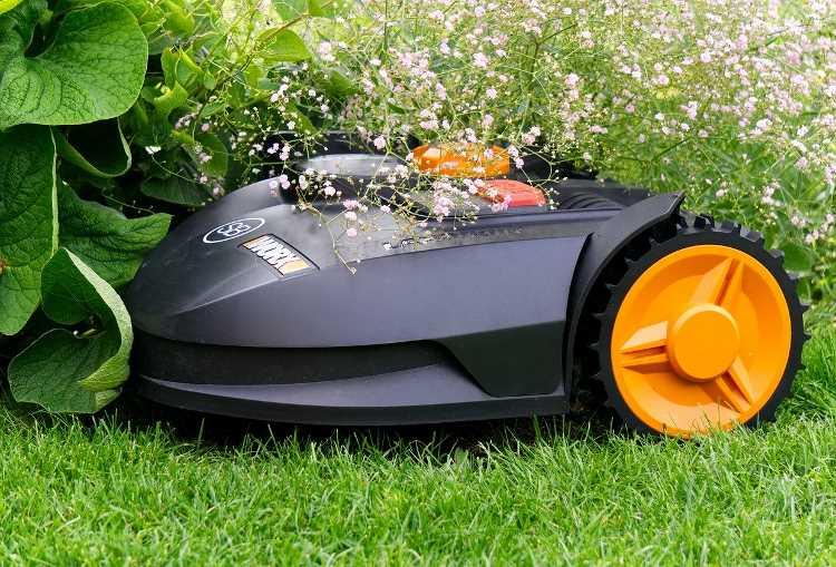 Worx robotic lawn mower for seniors