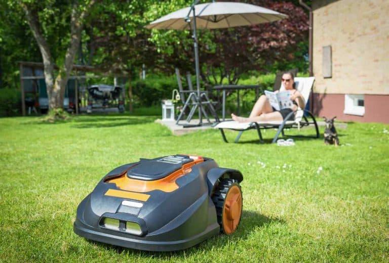 Best robotic lawnmower for seniors