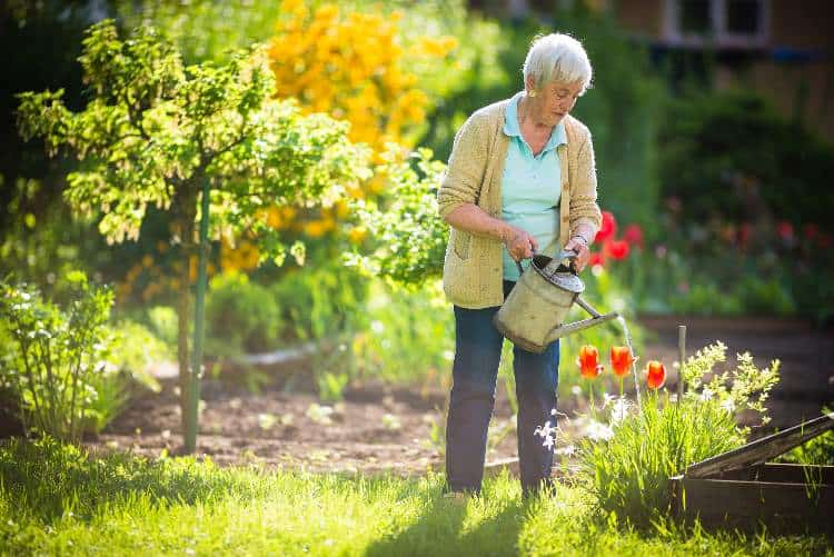 Gardening tools for seniors and the disabled