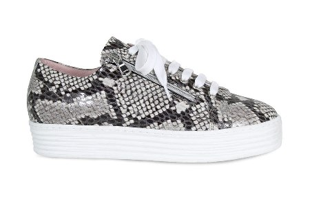 Sole Bliss snake print leather sneakers